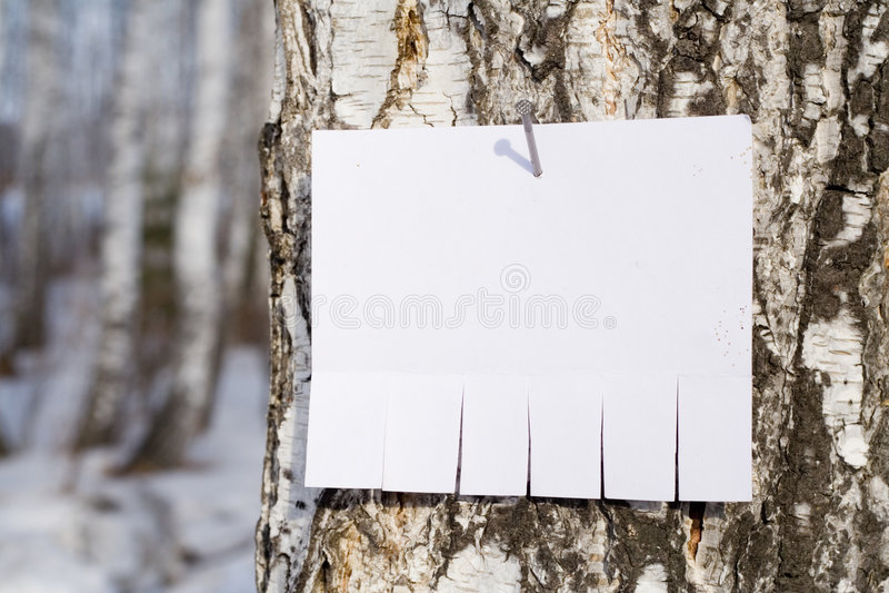 Aviso en árbol fotografía de archivo