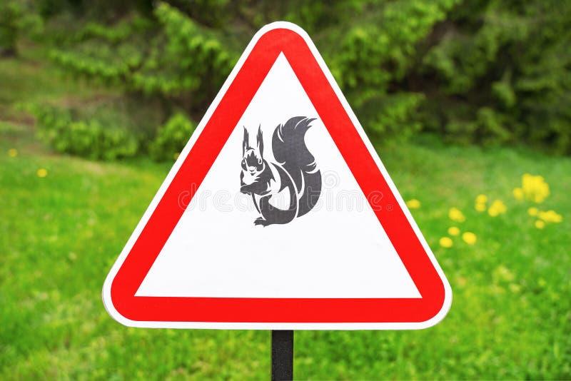 Aviso vermelho do sinal do triângulo dos esquilos da presença no fundo de árvores verdes no parque imagens de stock royalty free