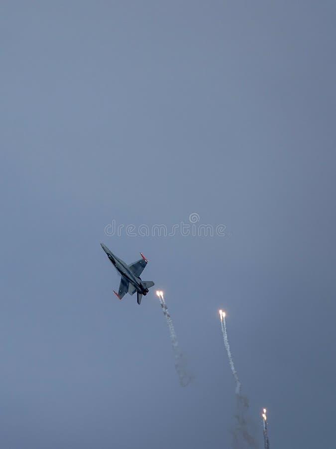 Avispón de McDonnell Douglas F-18, caza a reacción multiusos del combate imagen de archivo