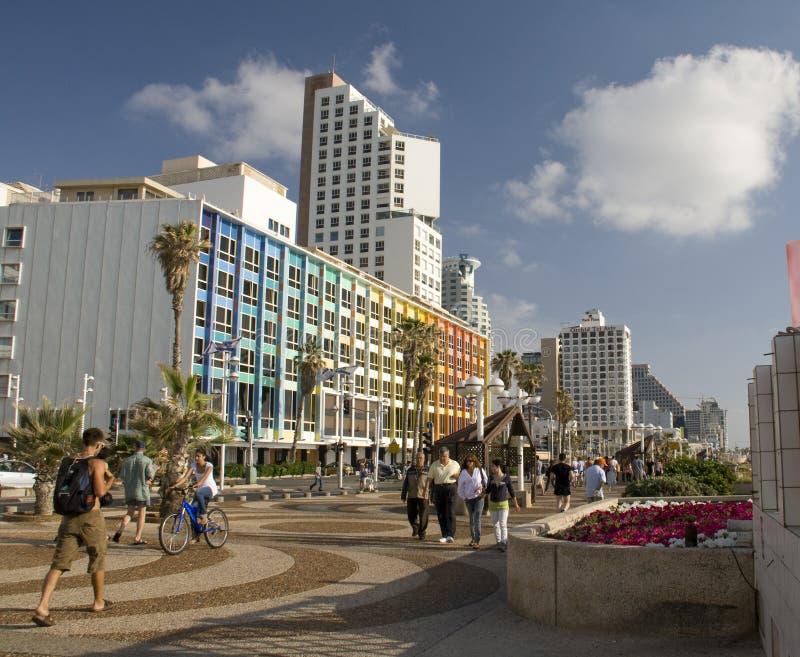 aviv海滨tel 免版税图库摄影