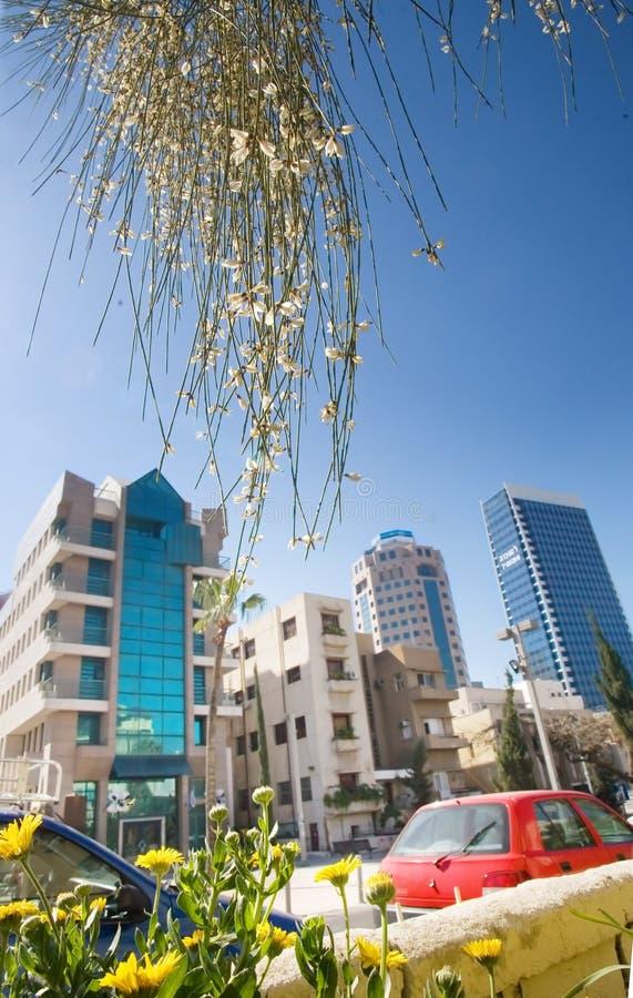 aviv tel 免版税库存图片