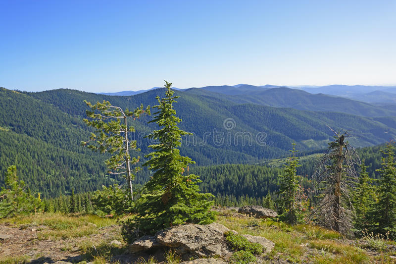 Avlägsen utsikt i vildmarken royaltyfri foto