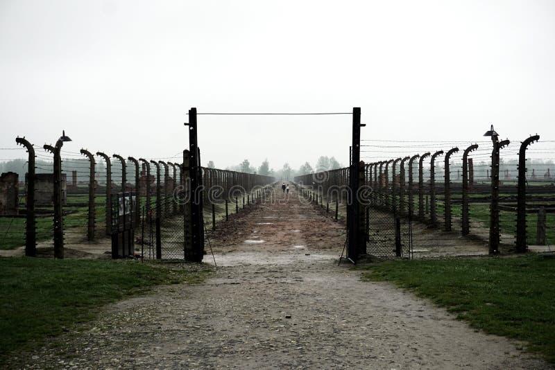 Avlägsna par i Auschwitz-Birkenau arkivbild