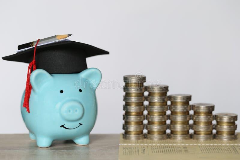 Avl?ggande av examenhatt p? den bl?a spargrisen med bunten av myntpengar p? tr?bakgrund, sparande pengar f?r utbildningsbegrepp arkivfoton