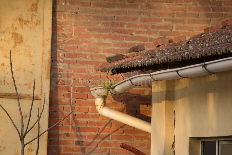 Avloppsränna som är fristående från taket med gräs royaltyfri fotografi