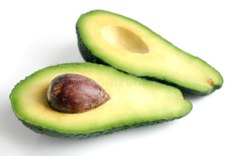 Avocado stockbilder