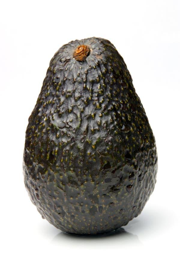 Avocado stock afbeelding