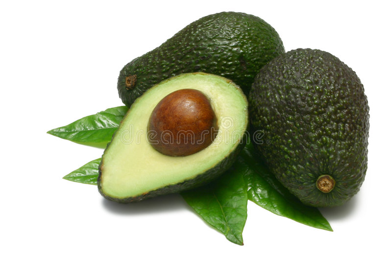 Download Avocado stock photo. Image of leaves, tropical, diet, whole - 2544146