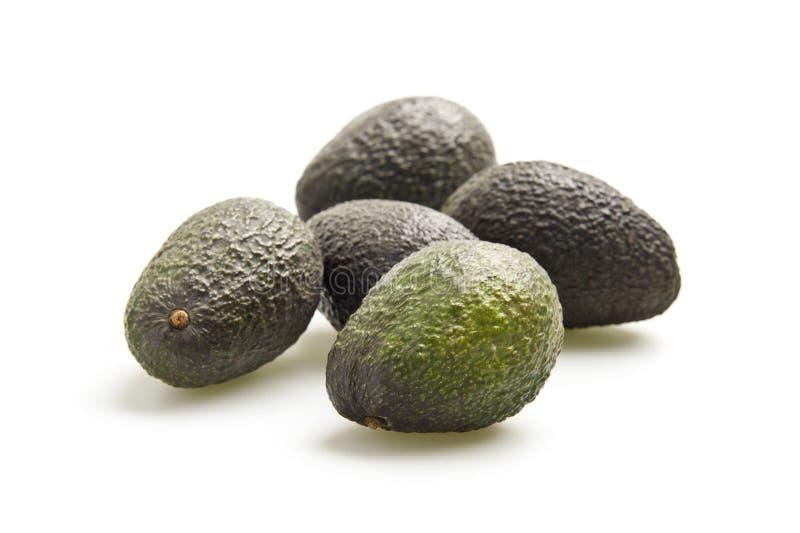 Download Avocado stockbild. Bild von bestandteile, gesund, gruppe - 27729961