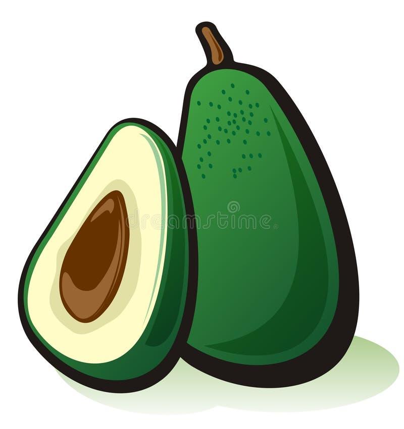Download Avocado stock vector. Illustration of drawing, illustration - 7336640