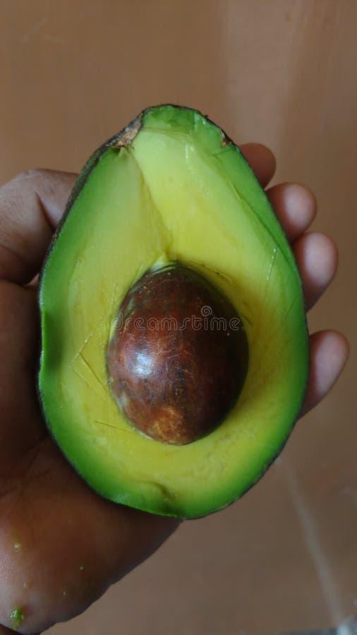 Avocado stockfotos