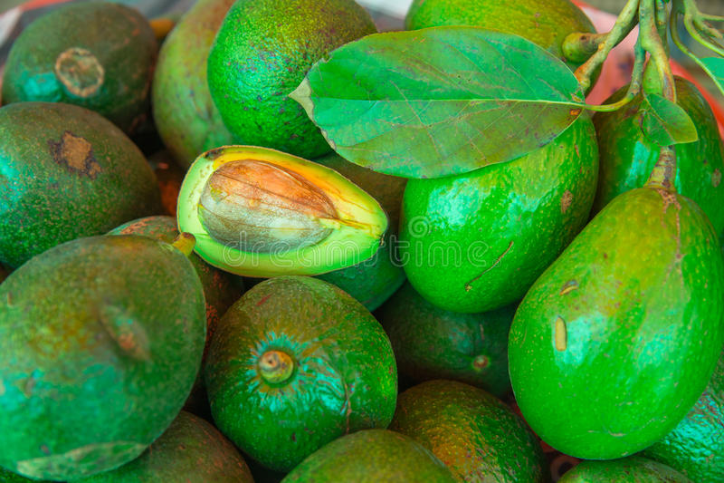 Avocado & x28; Americana& x29 della persea; alimento sano della frutta eccellente immagine stock libera da diritti