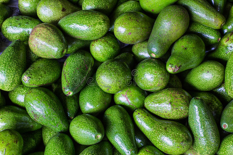 Avocado background. Fresh green avocado on a market stail. Food. Background stock photos