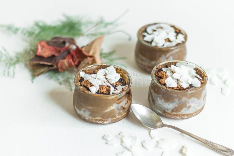AVOCADO-CAROB pudding obrazy royalty free