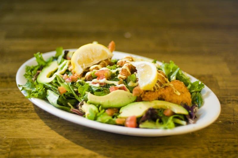Download Avocado chicken salad stock photo. Image of dressing - 24172732
