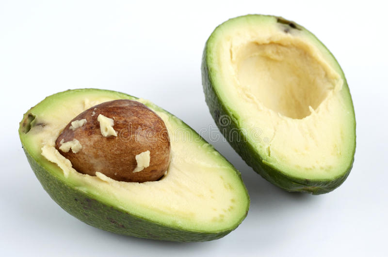 Download Avocado cut stock photo. Image of half, fruit, white - 18557906