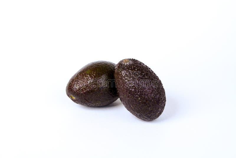 avocado dojrzały świeży obrazy royalty free