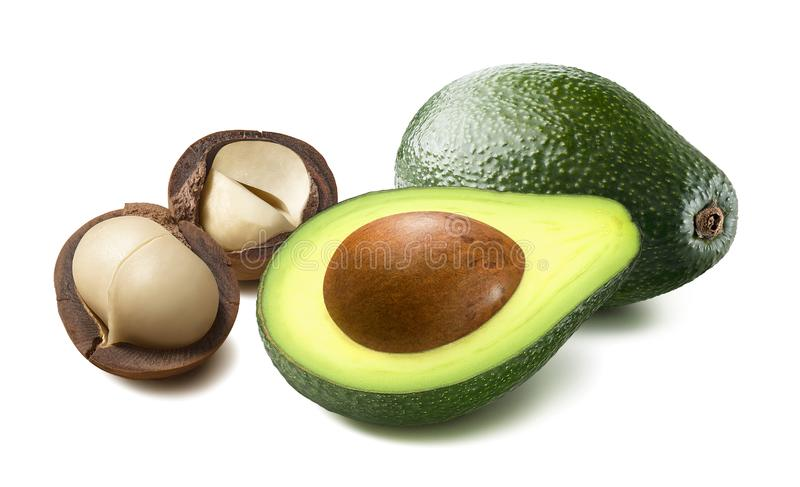 Avocado en macadamia in notedop die op witte achtergrond wordt ge?soleerd stock fotografie