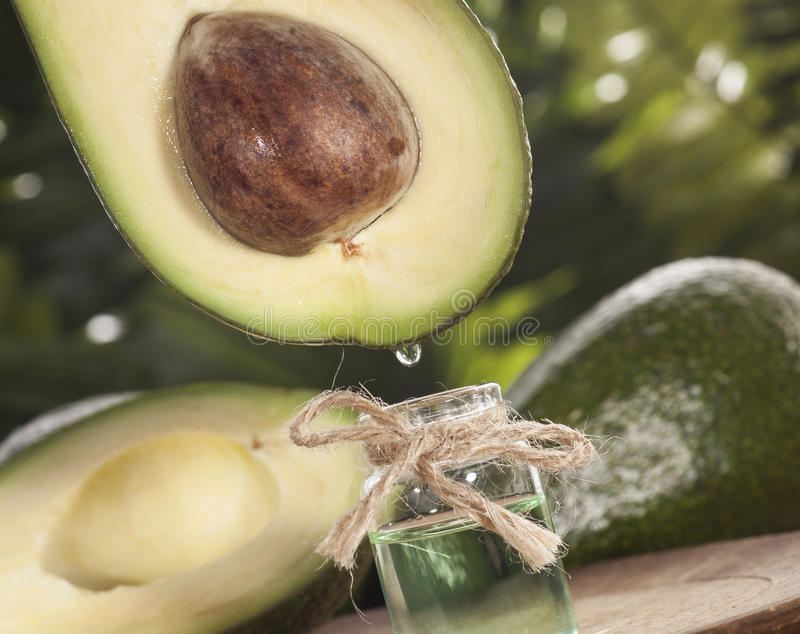 Avocado Essential Oil. On tropical green leaves background and wooden table. Horizontal. Front view stock photography