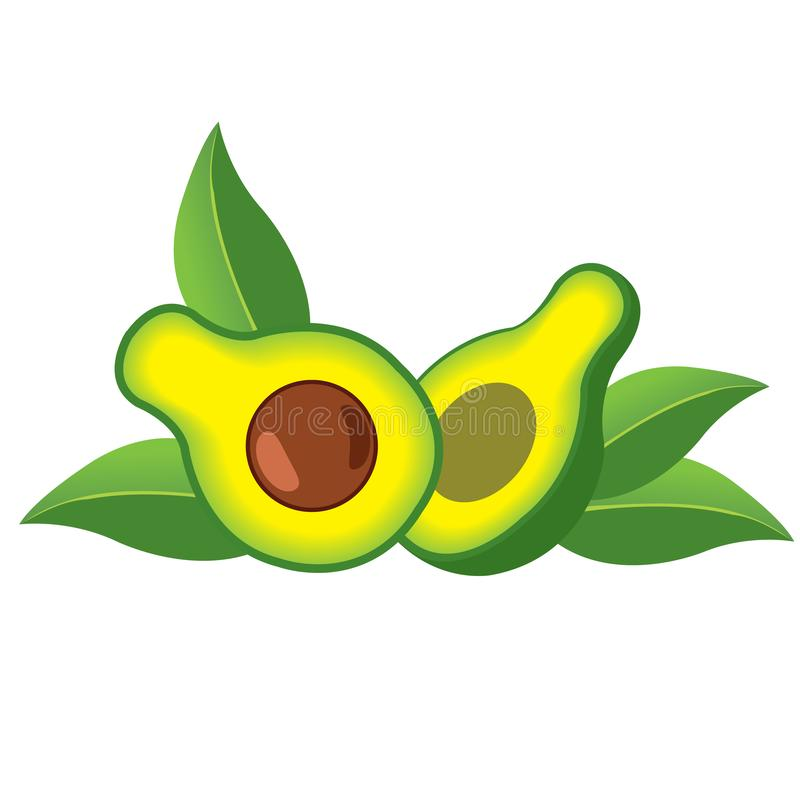 Avocado fruit logo. Halves of avocado leaves. Vegetarianism. Raw food diet vector illustration