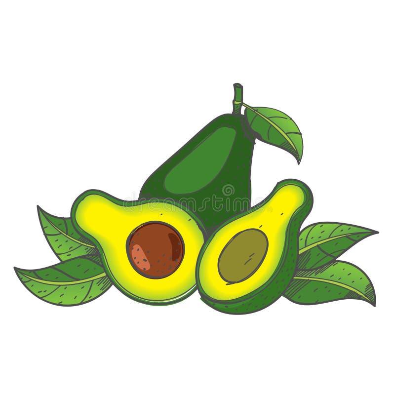 Avocado fruit logo. Halves of avocado leaves. Vegetarianism. Raw food diet royalty free illustration