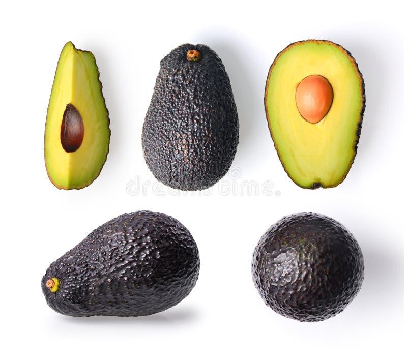 Avocado getrennt auf einem weißen Hintergrund lizenzfreie stockfotografie