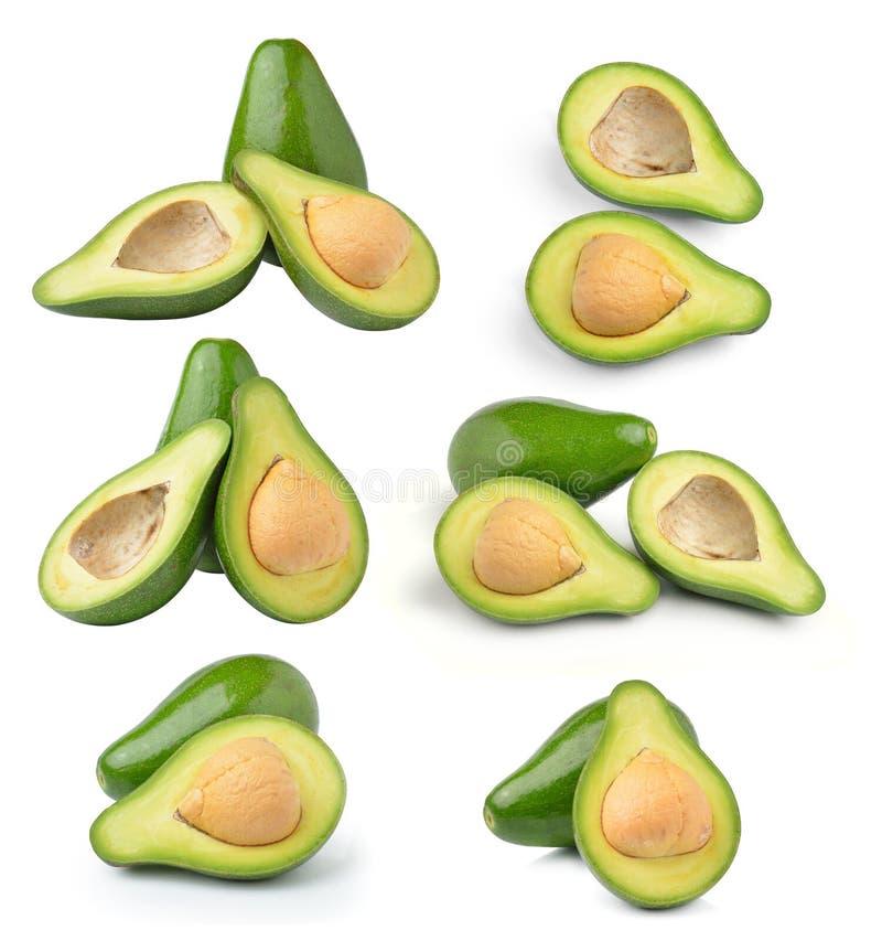 Avocado getrennt auf weißem Hintergrund lizenzfreie stockfotos