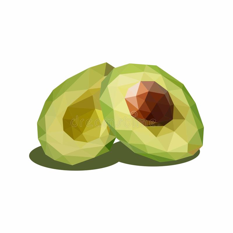 Avocado, Illustration of Fruit. Polygonal Art. Can be Used for reference learning for students toddlers vector illustration