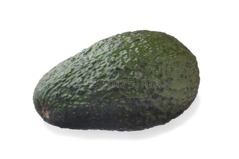 Avocado. Image of avocado studio isolated on white background stock photo