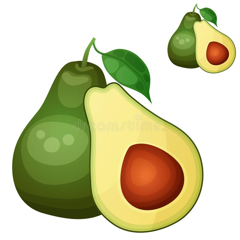 Avocado 2 Karikaturvektorikone lokalisiert auf Weiß vektor abbildung