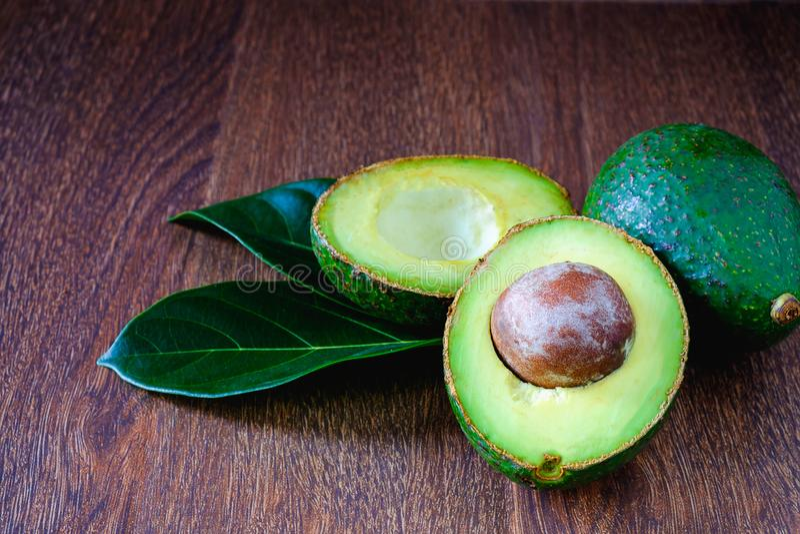 Avocado liście i owoc zdjęcie stock