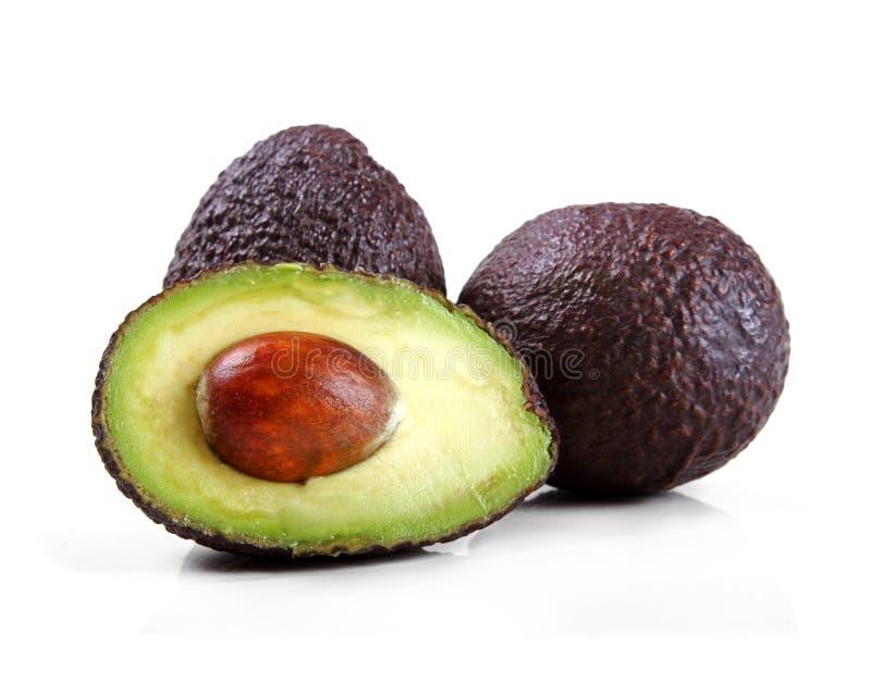 Avocado lokalisiert auf Weiß lizenzfreie stockbilder