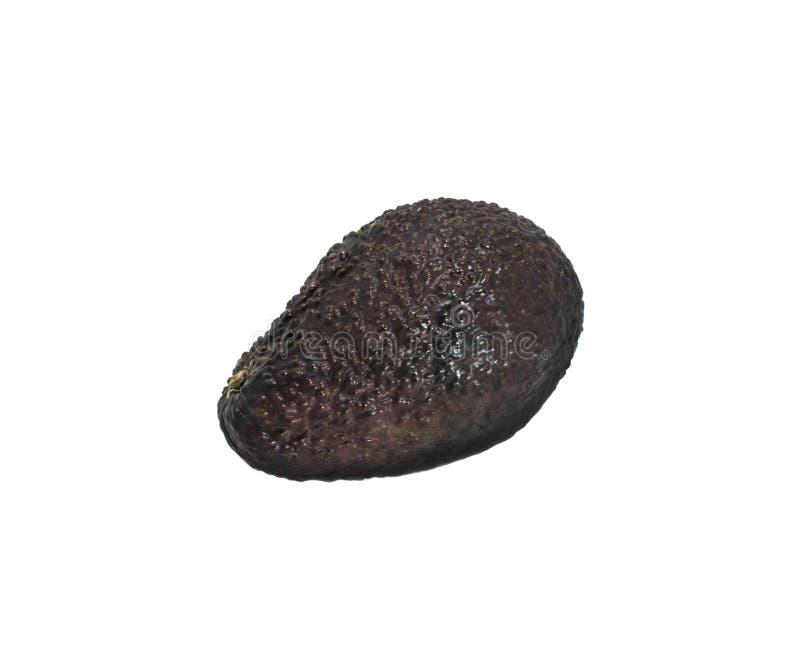 Avocado mûr noir sur fond blanc images stock