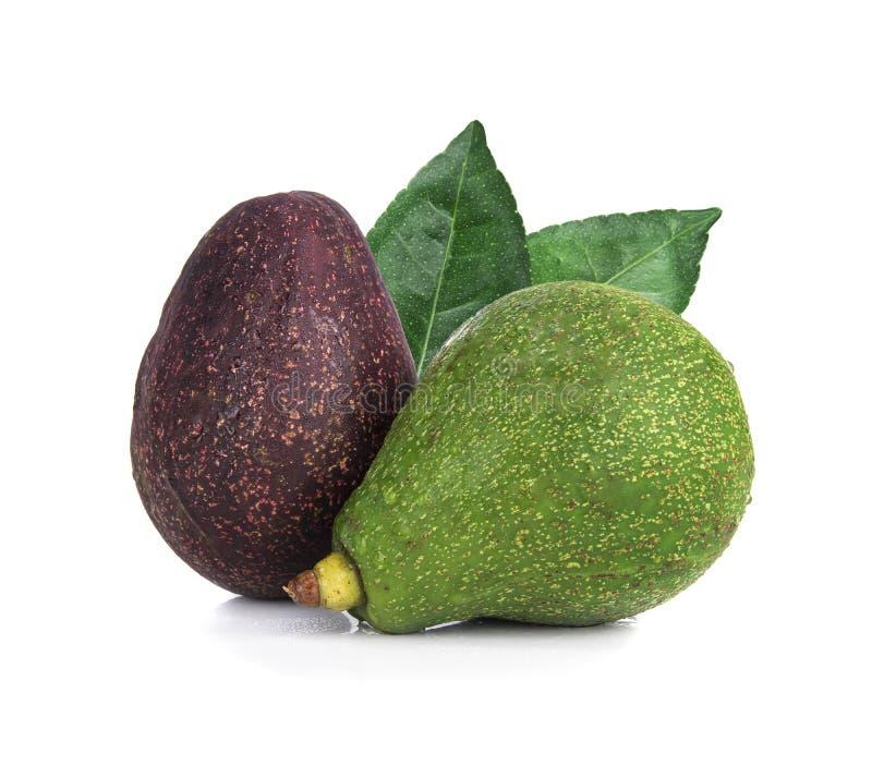 Avocado mit dem Blatt lokalisiert auf Weiß lizenzfreie stockfotografie