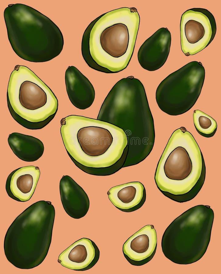 Avocado owoc wzór royalty ilustracja