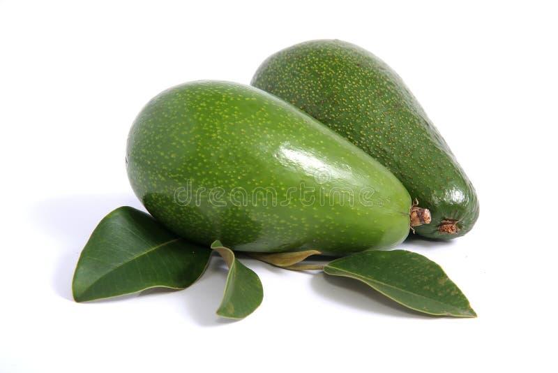Avocado Pears Stock Image