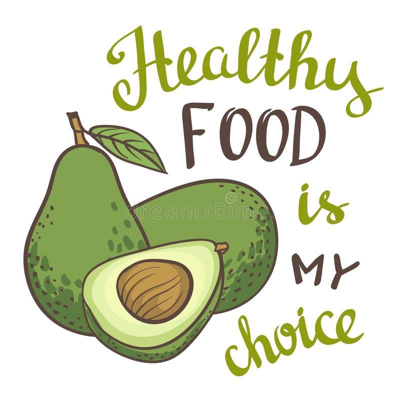 Avocado, połówka avocado, avocado ziarno Ręka rysujący obraz odizolowywający na białym tle ilustracja wektor