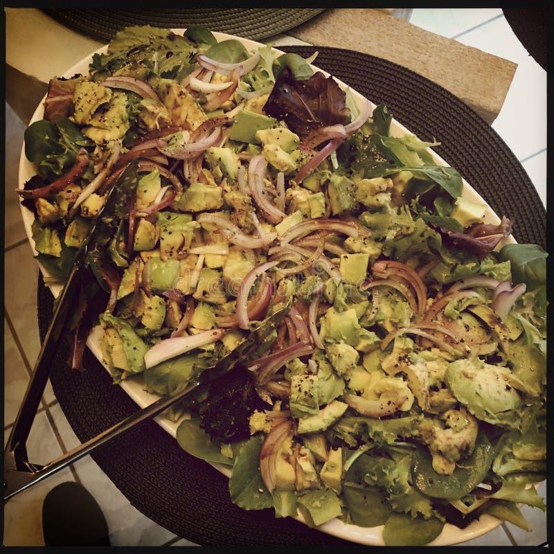 Avocado sałatka zdjęcie stock