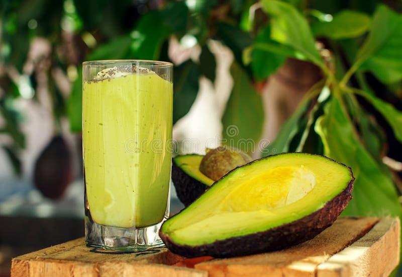 Avocado smoothie met avocadoboom op de achtergrond royalty-vrije stock fotografie