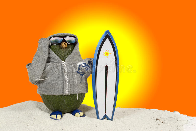 Avocado - surfer stock afbeeldingen