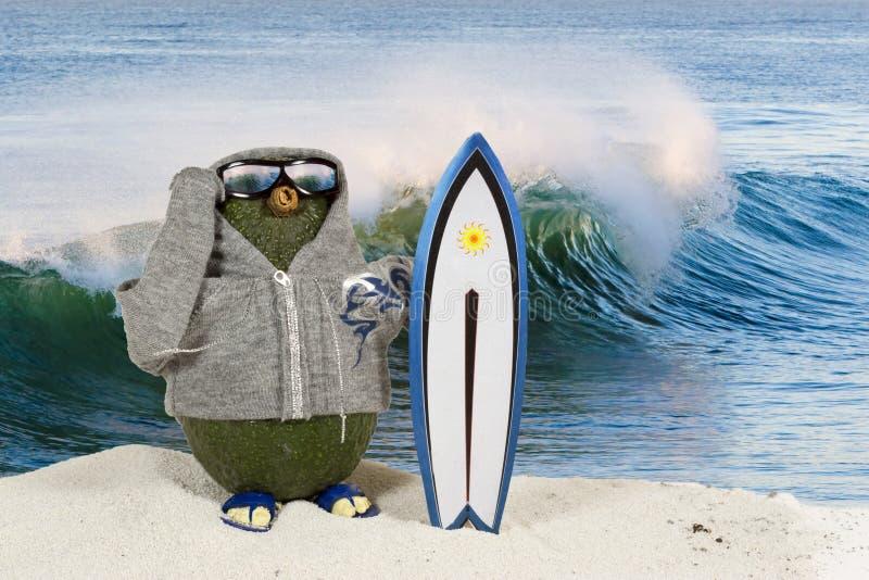 Avocado Surfer royalty-vrije stock foto's