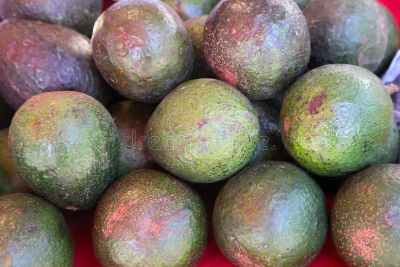 Avocado verwijst ook naar de vruchten van de Avocado-boom, die botanisch een grote bessen is met één zaadje Avocados zijn erg royalty-vrije stock afbeeldingen