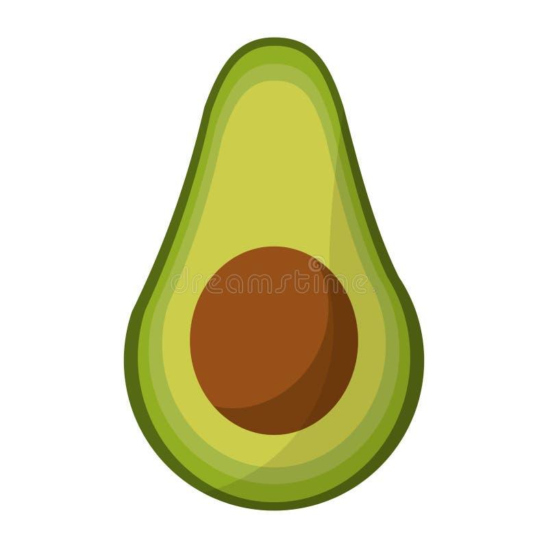 Avocado warzywa świeża żywność ilustracja wektor