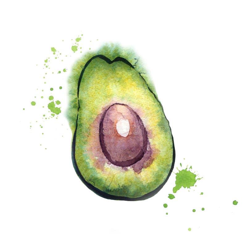 Avocadoaquarellillustration in der nass Art stockfotos