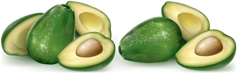 Avocadofruit en de scherpe helft stock illustratie