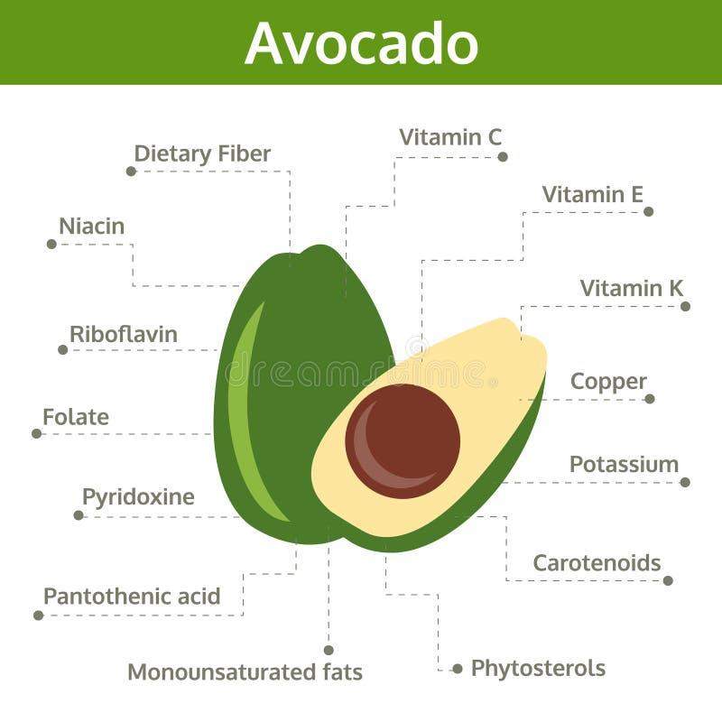 Avocadonährstoff von Tatsachen und von Nutzen für die Gesundheit, Informationsgraphik vektor abbildung