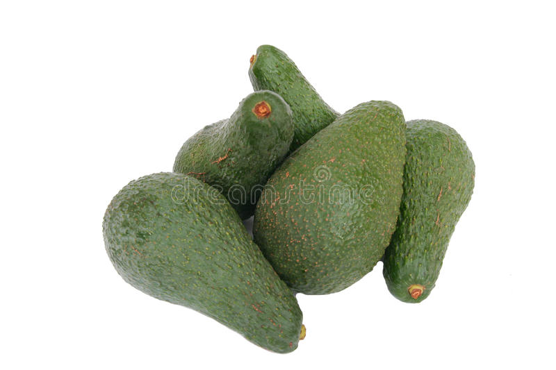 Avocados Stock Image