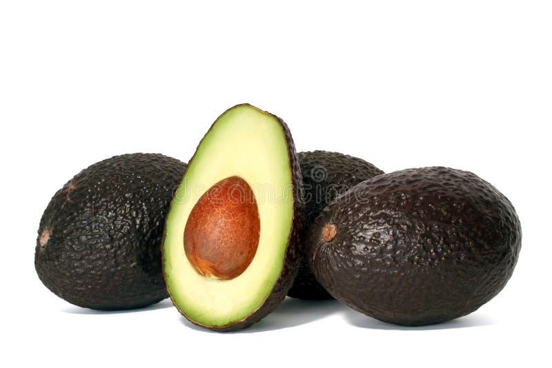 Download Avocados stock photo. Image of white, snack, avocado - 18352194