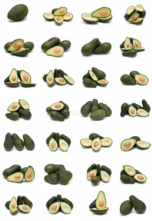 avocados inkasowi fotografia royalty free