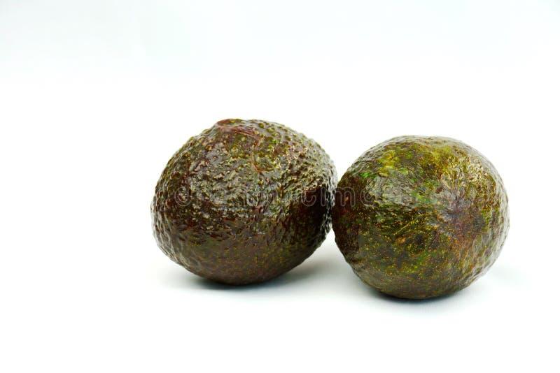 Avocados uprawiają ziemię świeży dojrzałego przedstawiającego na prostym białym tle zdjęcia stock